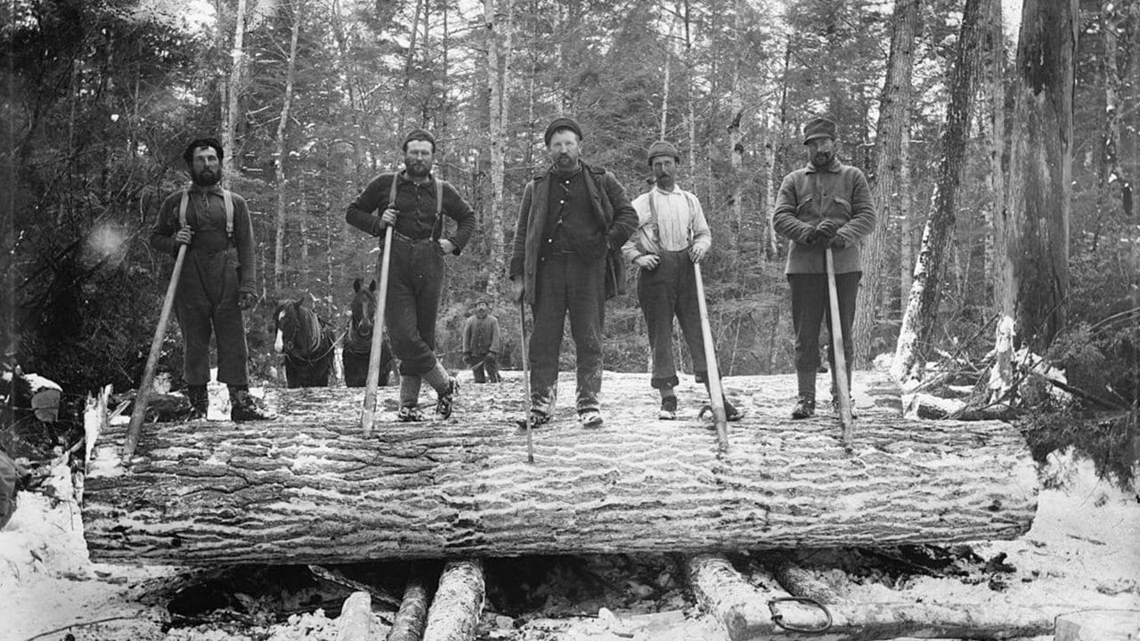 The young lumberjacks who powered the British Empire