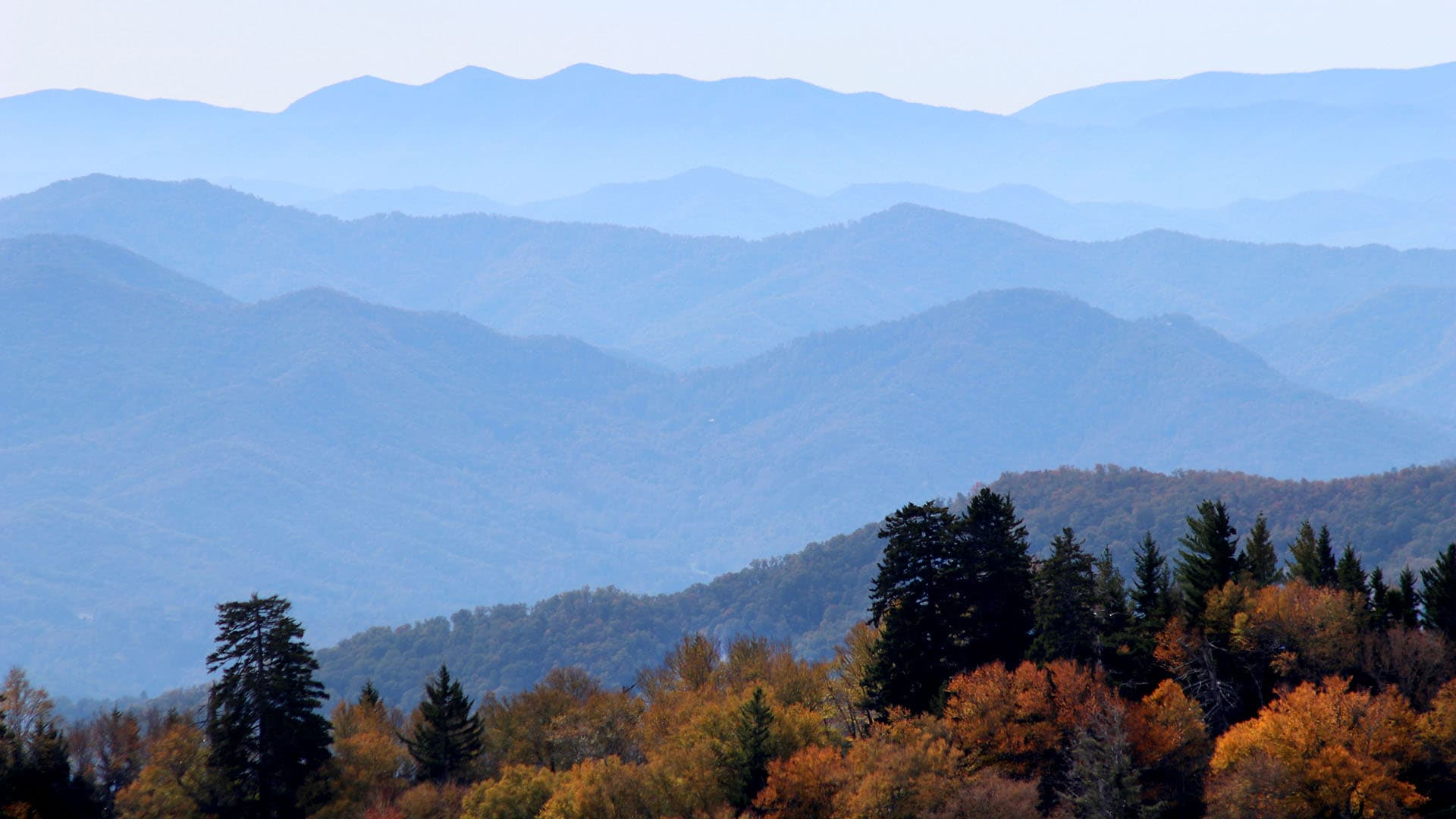 A hint of autumn adds to the ridegetop views of Great Smoky Mountains National Park.